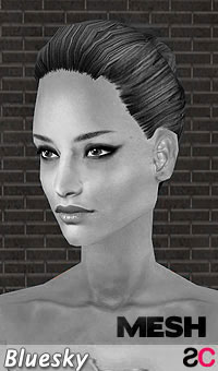 hair_bls_collectedtiedstyle_mesh